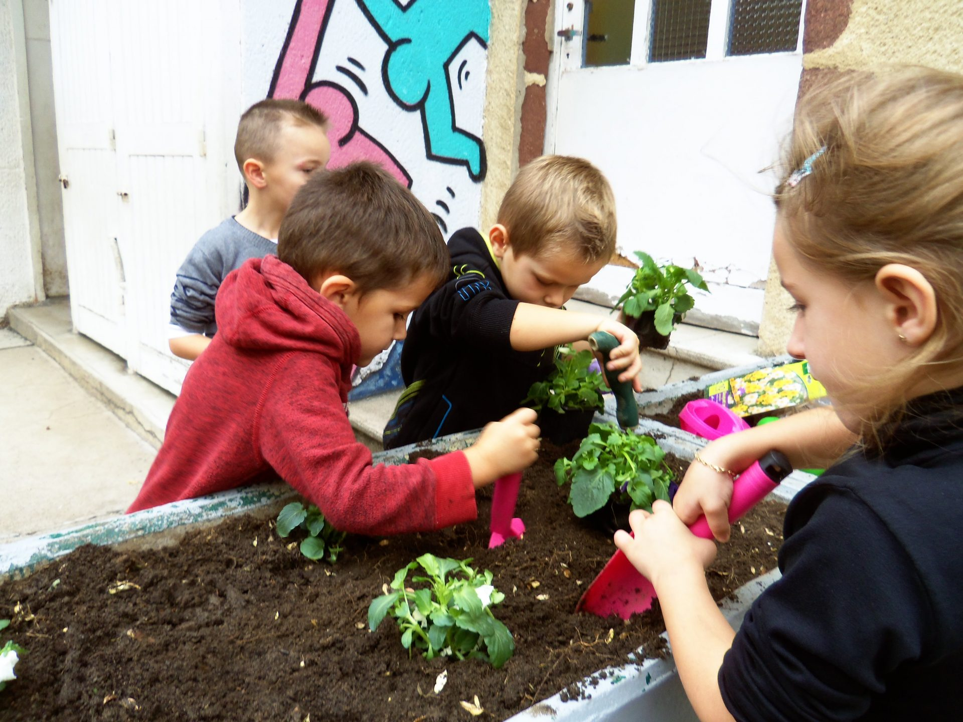 Activit jardinage en grande section cole sainte th r se Jardinage en janvier