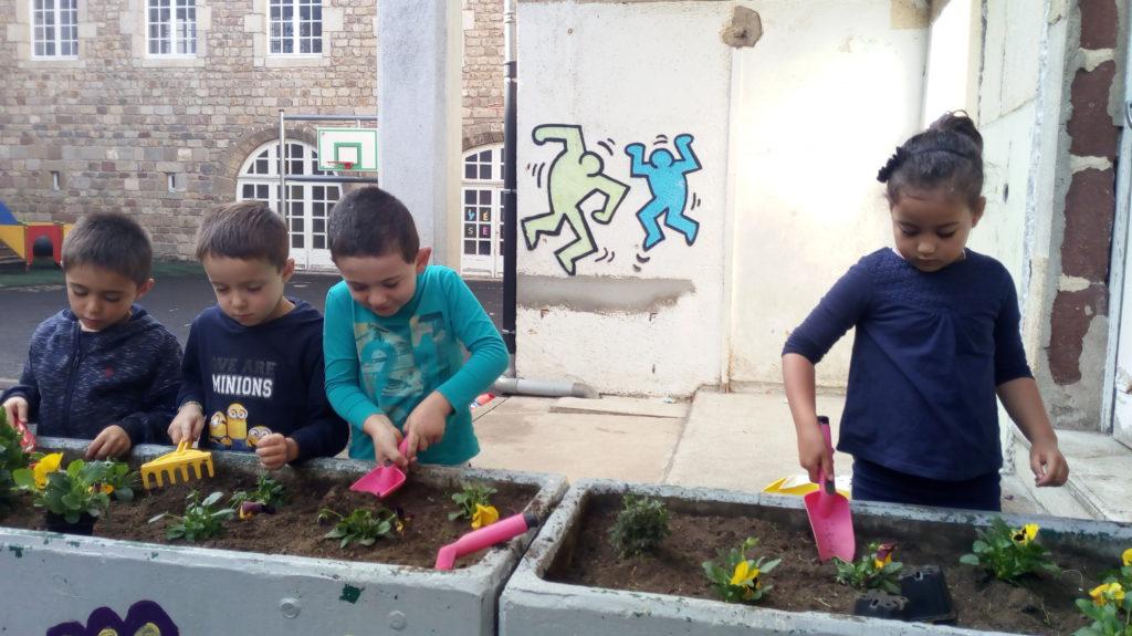 Jardinage en maternelle des pens es pour l 39 hiver Jardinage en janvier